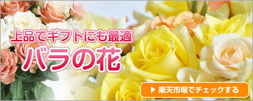 バラの花のご購入はこちら