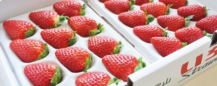 美味しいイチゴはどこで買うべき