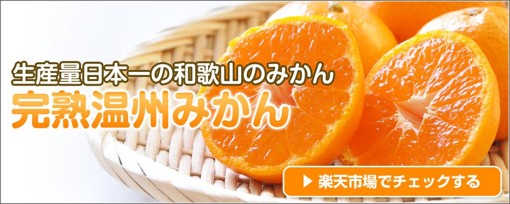 和歌山の完熟みかんのご購入はこちら