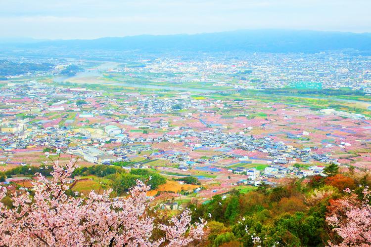 桃山町(桃源郷)