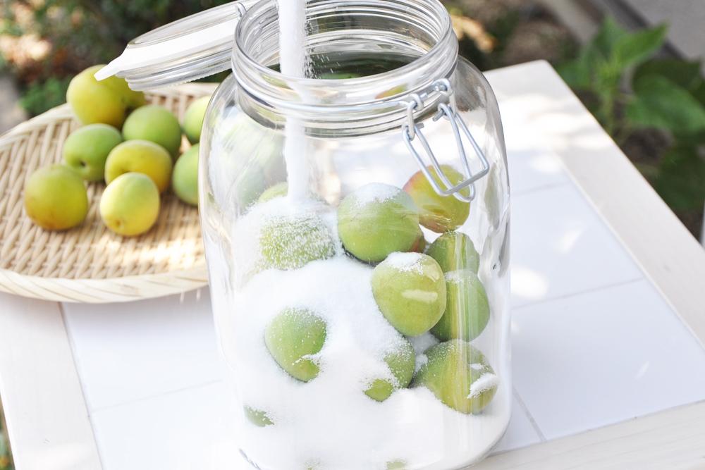 容器に梅と砂糖を入れる