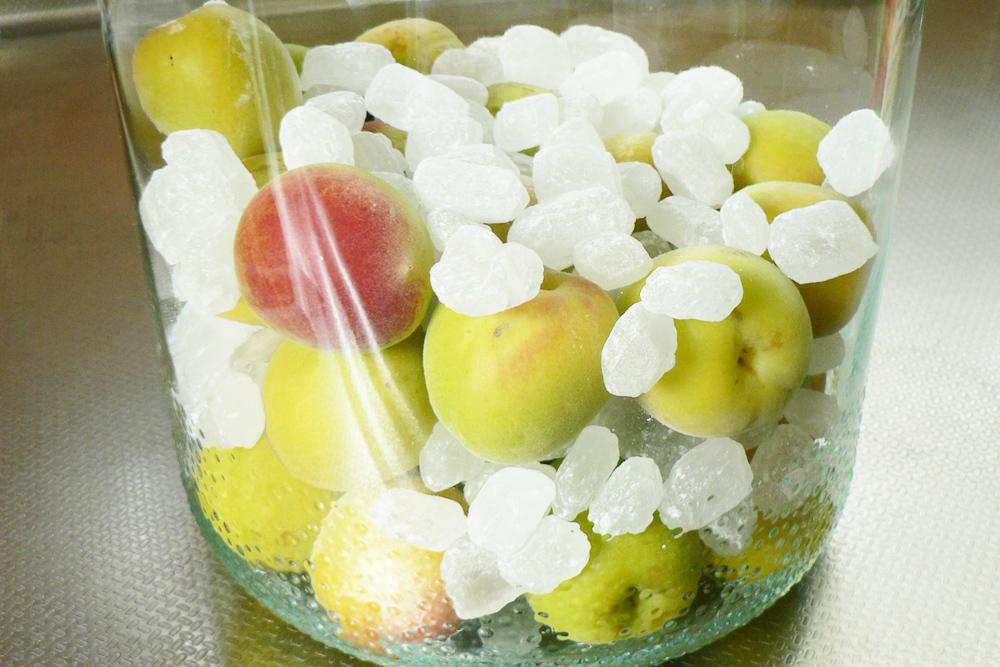 容器に梅と氷砂糖を入れる