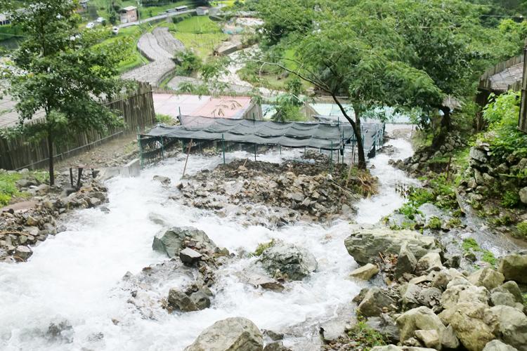 わさび畑の台風被害(紀伊半島豪雨)